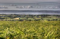 View from Cefn Bryn - Gower 1